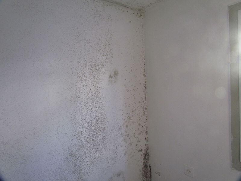 牆壁解決卜泥